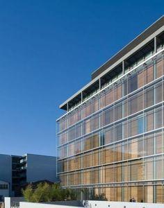 Bamboo - McCann FitzGerald Solicitors Corporate Headquarters