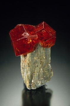 Grossular on Diopside - Eden Mills, Lamoille County, Vermont, USA Size: 2.3 cm