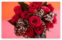 Red Roses Bouquet, Leopard Print Ribbon HD desktop wallpaper : Widescreen : High Definition : Fullscreen : Mobile : Dual Monitor