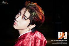 Stray Kids Seungmin, Felix Stray Kids, Shinee, Hoseok, Rapper, Photos Hd, Baby Squirrel, Korean Boy Bands, Back Doors