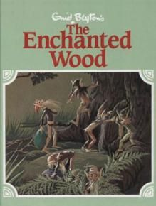 'The Enchanted Wood' by Enid Blyton - I fell in love with this series as a kid and share them now with my own daughters and Yr 1 students <3