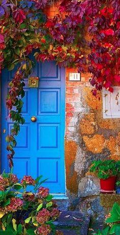 Una bugambilia  da marco al bello tono de azul de la puerta