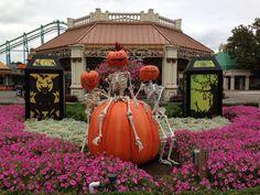HalloWeekends at Cedar Point Best Amusement Parks, Cedar Point, Park Resorts, Water Parks, Lake Erie, Illinois, Halloween Decorations, Ohio, Favorite Things