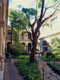 Patio de Universidad de la Republica