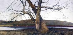 Andrew Wyeth Paintings 21