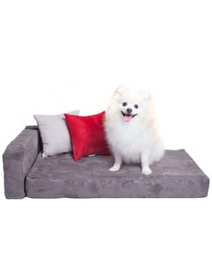 suede pet couch