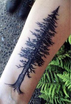 Redwood ❤️