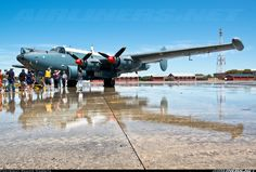 Photo taken at Ysterplaat (FAYP) in South Africa on January Avro Shackleton, South African Air Force, F14 Tomcat, Air Force Aircraft, Aircraft Pictures, Royal Air Force, Royal Navy, Liverpool Fc, Spacecraft