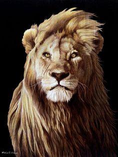 pyrography lion portrait
