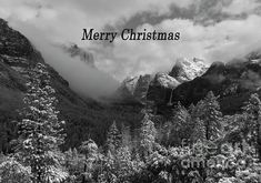 Yosemite Merry Christmas Greeting Card for Sale by Norma Brandsberg Merry Christmas Greetings, Christmas Greeting Cards, Yosemite Mountains, Colorado Mountains, Before Midnight, Custom Greeting Cards, Mountain Landscape, Winter Scenes, How To Be Outgoing