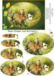 Baby Rabbit with a Butterfly