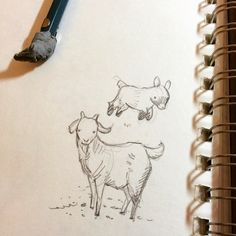 Took a short break from very secret freelance to draw a couple warm-up goats. Now, back to my lair, with the hope of having something to show in February! #goats #ofcourse #pencil #sketch