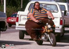 Funny Fat Man on Bike [ More Funny Fat Man Pics: http://www.picsgag.com/funny-people/ ]