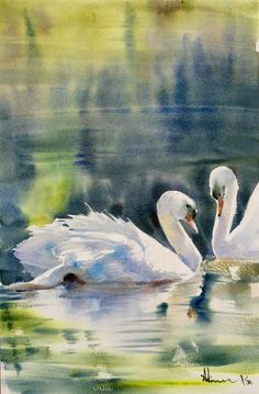 Swans , Adisorn Pornsirikarn