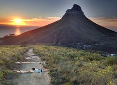 Lions Head, Cape Town, South Africa (Photo A. Vacation Destinations, Dream Vacations, Some Pictures, Cape Town, Mount Rainier, Lions, South Africa, African, Mountains