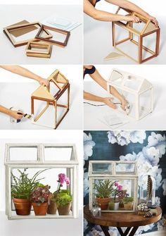 DIY: Indoor Greenhouse  No directions on link- but looks self explanitory(?) maybe this could be done worth different sized picture frames from the dollar store, just remove the back and use silicone to hold the glass in?