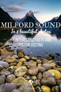Milford Sound in 8 beautiful photos + 8 interesting facts and tips for visiting New Zealand Itinerary, New Zealand Travel Guide, New Zealand Cruises, Nz South Island, New Zealand South Island, Nova, New Zealand Adventure, Queenstown New Zealand, Milford Sound
