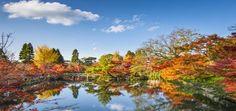 Come creare un #giardino giapponese a casa
