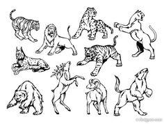 Animal Lion Wolf Tattoo Designs   Tattoobite.com