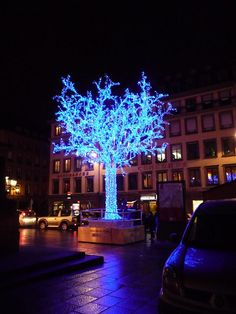 Place Gutemberg - Strasbourg by sheshe67, via Flickr #Strasbourg #christmas