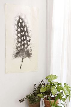Feather Study No. 1 Art Print - Urban Outfitters