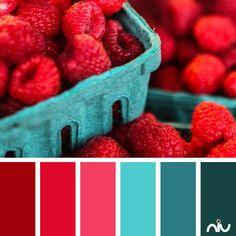 raspberries (food & drink)  Color Palette - Paint Inspiration- Paint Colors- Paint Palette- Color- Design Inspiration