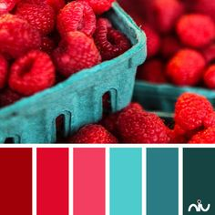 raspberries (food & drink)  Color Palette - Paint Inspiration- Paint Colors- Paint Palette- Color- Design Inspiration