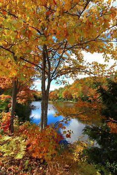 Fall colors near Marquette Mi