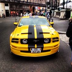 Ford Shelby GT500 Bumblebee edition!