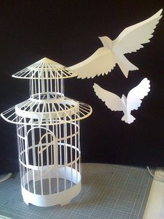 Doves Cage