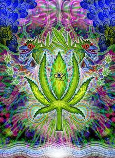 Trippy Weed Backgrounds | trippy weed graphics and comments