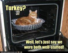 Did anyone Say TURKEY????
