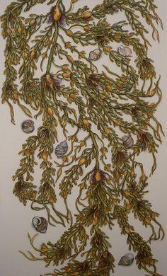 Mimi Gregoire Carpenter - October Seaweed (Sargasso)