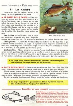 Manuels anciens: Orieux, Everaere, Leçons de choses CE (1952) Study French, Drawing S, Biology, Vocabulary, Education, Islam, Socialism, Learn French, Social Science