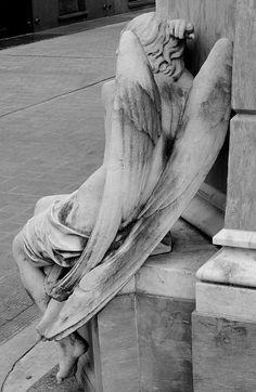 los ángeles no tienen espalda / Angels haven´t back