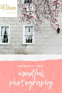 tips and tricks on how to create mindfulness in your photos. Vienna, Fig, Your Photos, Mindfulness, Neon Signs, Create, Green, Photography, Color
