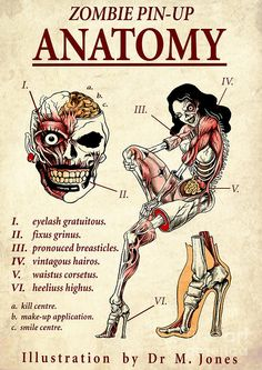 ☆ Pin-up Zombie Anatomy -:¦:- Artist Marcus Jones ☆ This image helps when pointing and defining sections of the body and muscles. It maybe important when it comes to adding detail on Henry's leg time dependant. Zombie Pin Up, Zombie Life, Zombie Art, Zombie Style, Zombies, Pin Up Tattoos, Girl Tattoos, Anatomy Art, Skull And Bones