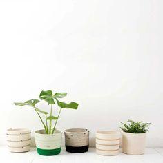 Items similar to Cylinder Shaped Coiled Rope Basket / Bathroom Storage / Planter on Etsy Green Basket, Waste Solutions, Scotch Tape, Rope Basket, Cylinder Shape, African Design, Cotton Rope, Kitchen Utensils, Bathroom Storage