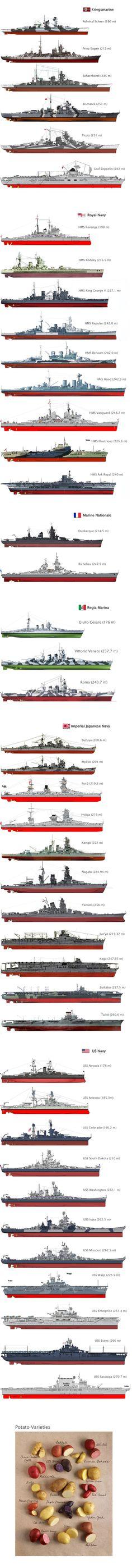 35 Best Battleship images in 2019 | Battleship, Military
