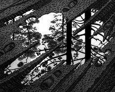 Image result for escher paintings
