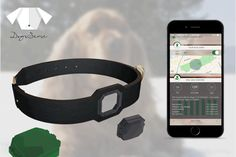 Meet the DogsSense: a smart wearable system that helps you track your dog's location and activity. It has a sensor to measure your dog's heart rate, body Dog Heart Rate, Leather Collar, Sell Items, Fitbit, Your Dog, How To Get, Activities, Pet Products, Pets