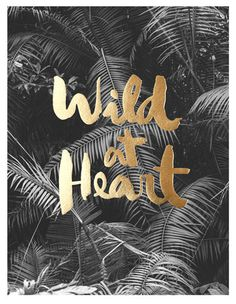 Wild at heart print, quote, motivational monday, love, Emily kate blog