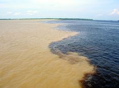 Marriage of the Waters, Manaus, Brazil. Where the Rio Solimoes and Rio Negro meet but never mix. The Places Youll Go, Great Places, Places To See, Beautiful Places, Brazil Amazon, Amazon River, Amazon Rainforest, Vacation Packages, Mother Nature