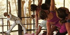 10 Tips to Organize a Successful Yoga Retreat or Holiday
