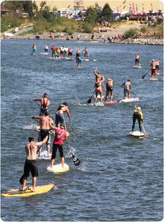 Paddle Board Race in Hood River, Oregon