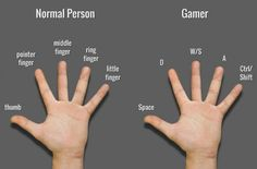 PC gamers reality