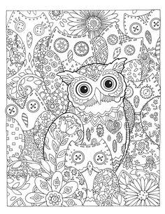 Creative Haven Owls Coloring Book By Marjorie Sarnat Hidden Hoots