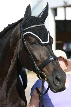 Dressage bonnet. De La Coeur fly bonnets. www.delacoeur.ca