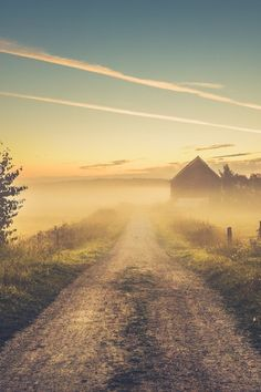 Misty road, dirt, country road, blue sky, barn, tree, mist, fog, beauty of Nature, peaceful, Morning mist, photo