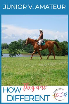 Ever wonder what the difference is between junior and amateur horseback riders? We break down the biggest differences you'll see at your next horse show. Time Management Skills, Horse World, Forever Grateful, Saddle Pads, Wine And Beer, Show Horses, Make Time, Different, Equestrian